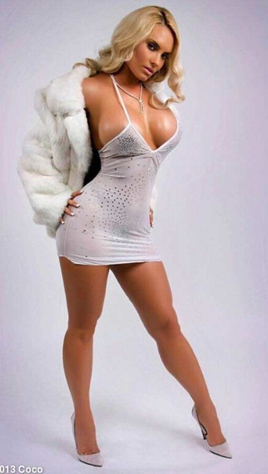 Coco Austin sexy dress photos