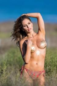 Brittney Palmer Topless Calendar 2018